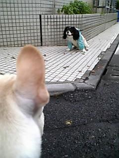 のぼるくんと友達2